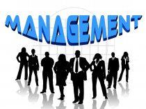 Società in accomandita semplice, socio accomandatario, gestione commercianti