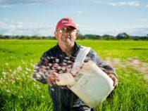 Iscrizione di un lavoratore nell'elenco dei lavoratori agricoli