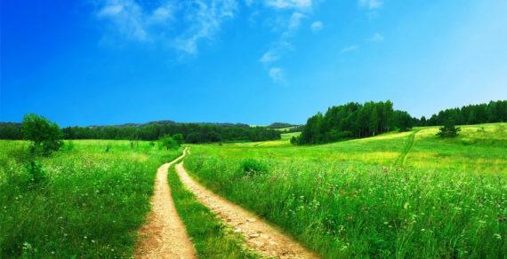 Requisito dell'apparenza, servitù di passaggio, sentiero formatosi naturalmente per effetto del calpestio